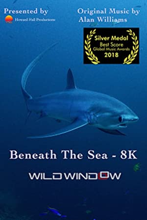Wild Window: Beneath The Sea