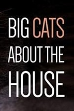 Big Cats About The House: Season 1